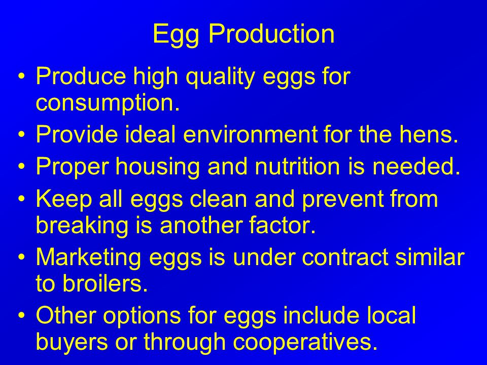 Egg Production Produce high quality eggs for consumption.