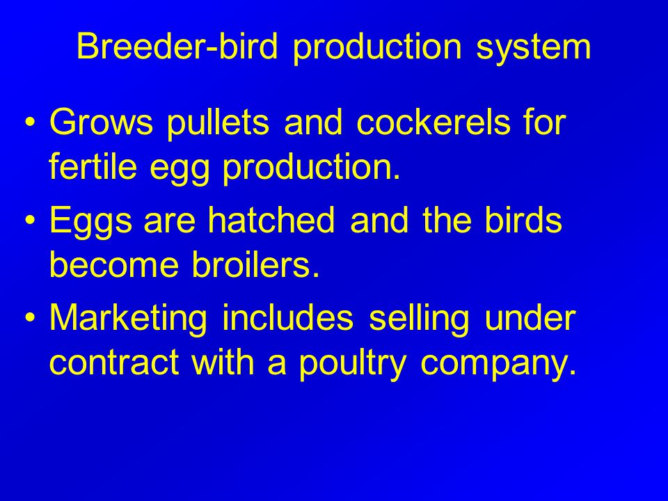 Breeder-bird production system Grows pullets and cockerels for fertile egg production.