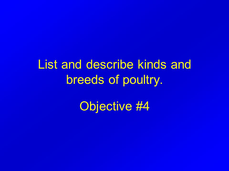 List and describe kinds and breeds of poultry. Objective #4