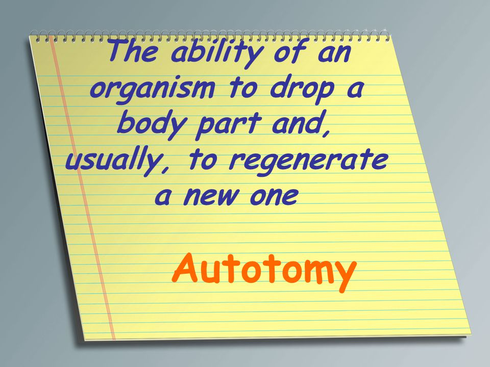 The ability of an organism to drop a body part and, usually, to regenerate a new one Autotomy