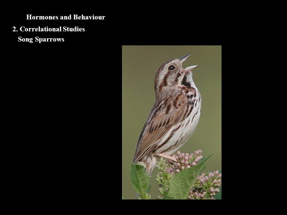 Hormones and Behaviour Song Sparrows 2. Correlational Studies