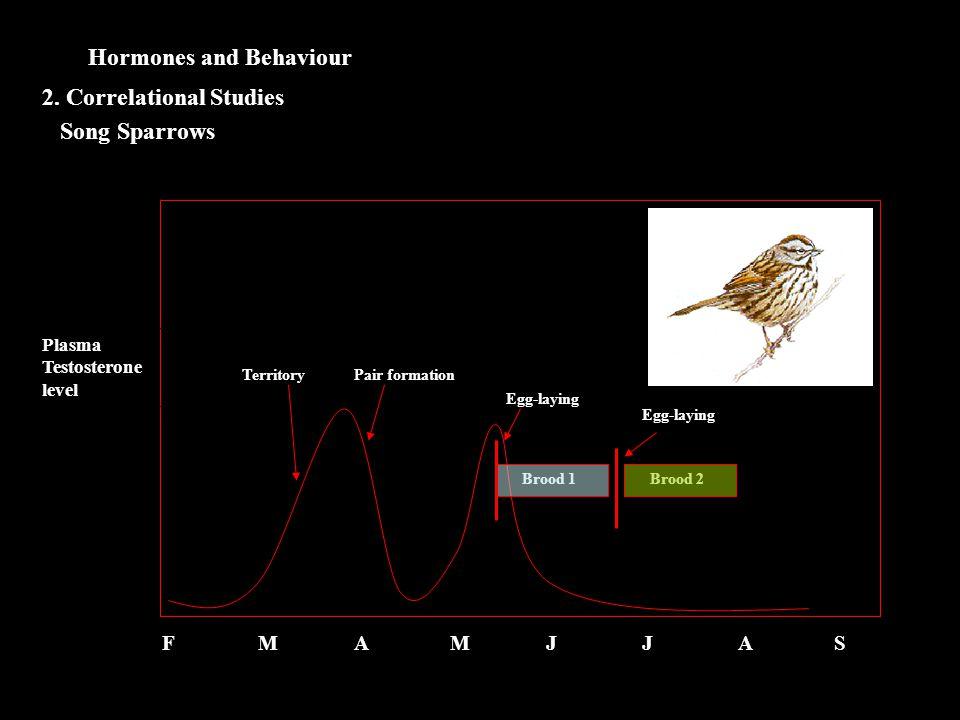 Hormones and Behaviour Song Sparrows 2. Correlational Studies Plasma Testosterone level FMAMJJASFMAMJJAS TerritoryPair formation Egg-laying Brood 1 Eg