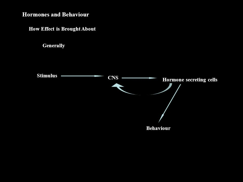 Hormones and Behaviour How Effect is Brought About Generally Stimulus CNS Hormone secreting cells Behaviour