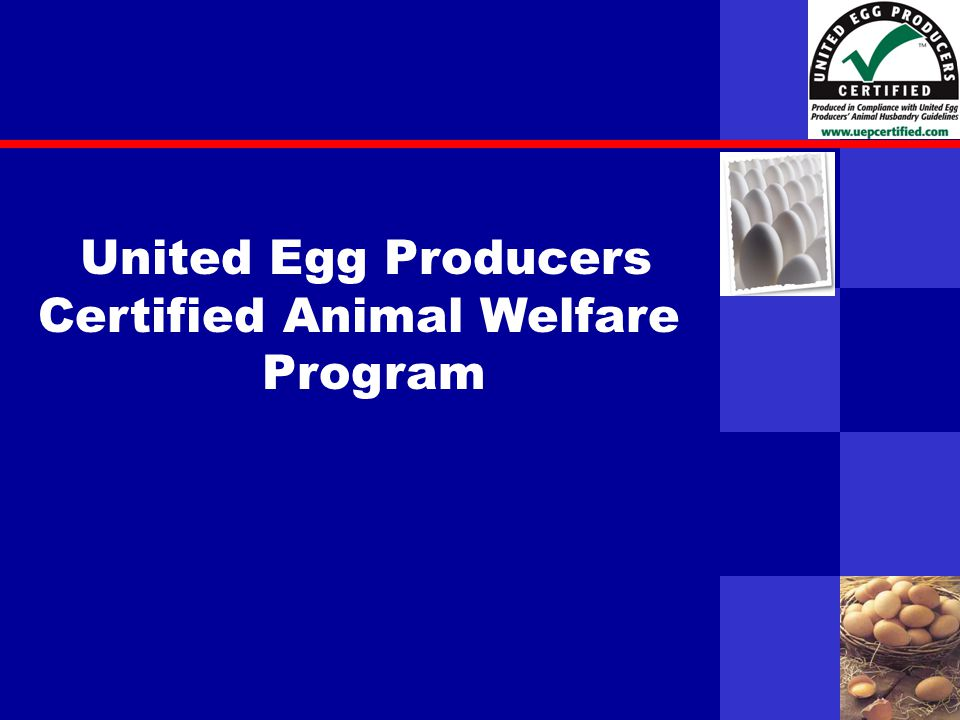 United Egg Producers United Egg Producers Certified Animal Welfare Program