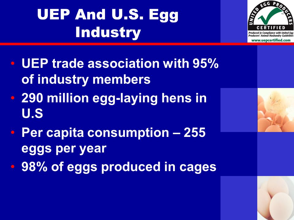 United Egg Producers UEP And U.S.