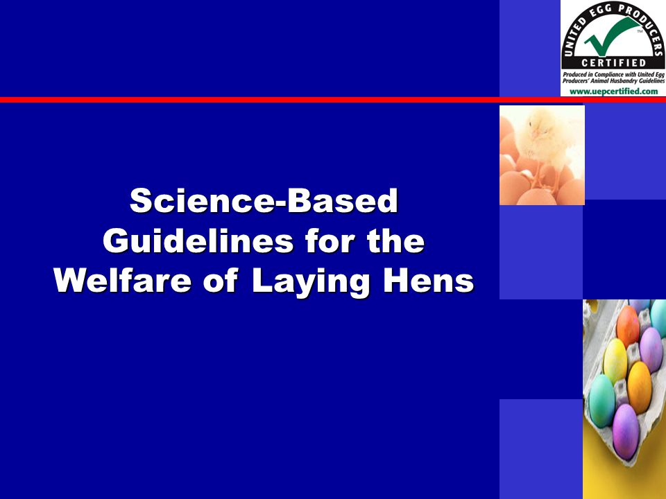 United Egg Producers Science-Based Guidelines for the Welfare of Laying Hens