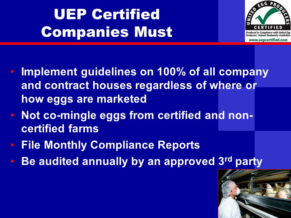 United Egg Producers UEP Certified Companies Must Implement guidelines on 100% of all company and contract houses regardless of where or how eggs are marketed Not co-mingle eggs from certified and non- certified farms File Monthly Compliance Reports Be audited annually by an approved 3 rd party