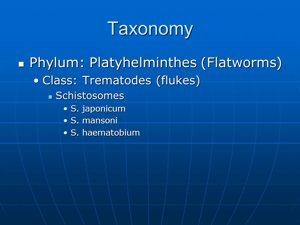 Taxonomy Phylum: Platyhelminthes (Flatworms) Phylum: Platyhelminthes (Flatworms) Class: Trematodes (flukes)Class: Trematodes (flukes) Schistosomes Sch