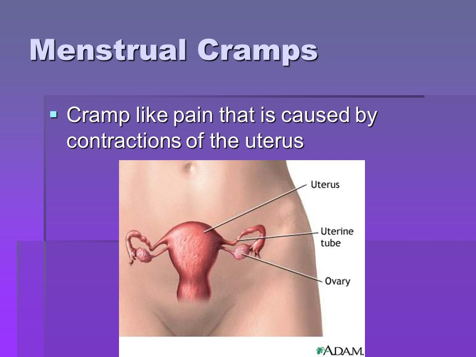 Menstrual Cramps Cramp like pain that is caused by contractions of the uterus Cramp like pain that is caused by contractions of the uterus