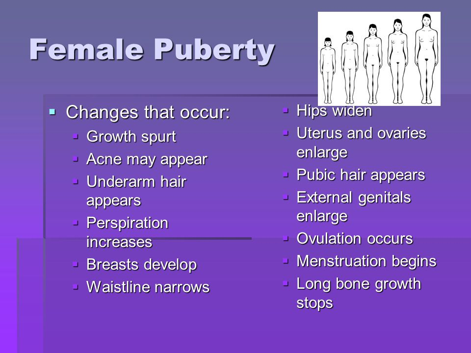 Female Puberty Changes that occur: Changes that occur: Growth spurt Growth spurt Acne may appear Acne may appear Underarm hair appears Underarm hair appears Perspiration increases Perspiration increases Breasts develop Breasts develop Waistline narrows Waistline narrows Hips widen Uterus and ovaries enlarge Pubic hair appears External genitals enlarge Ovulation occurs Menstruation begins Long bone growth stops