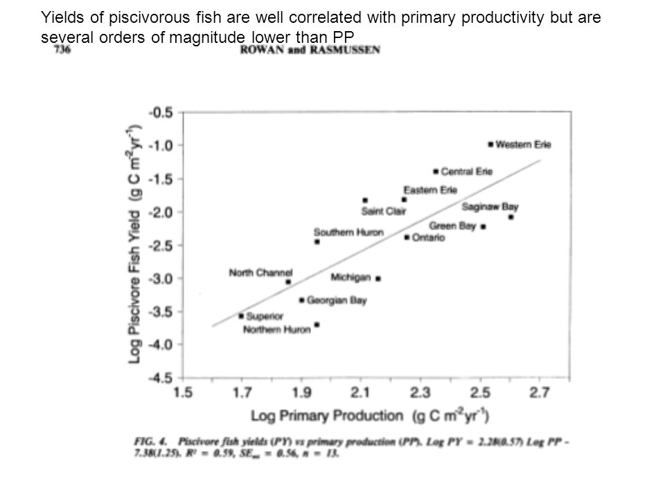 Yields of piscivorous fish are well correlated with primary productivity but are several orders of magnitude lower than PP