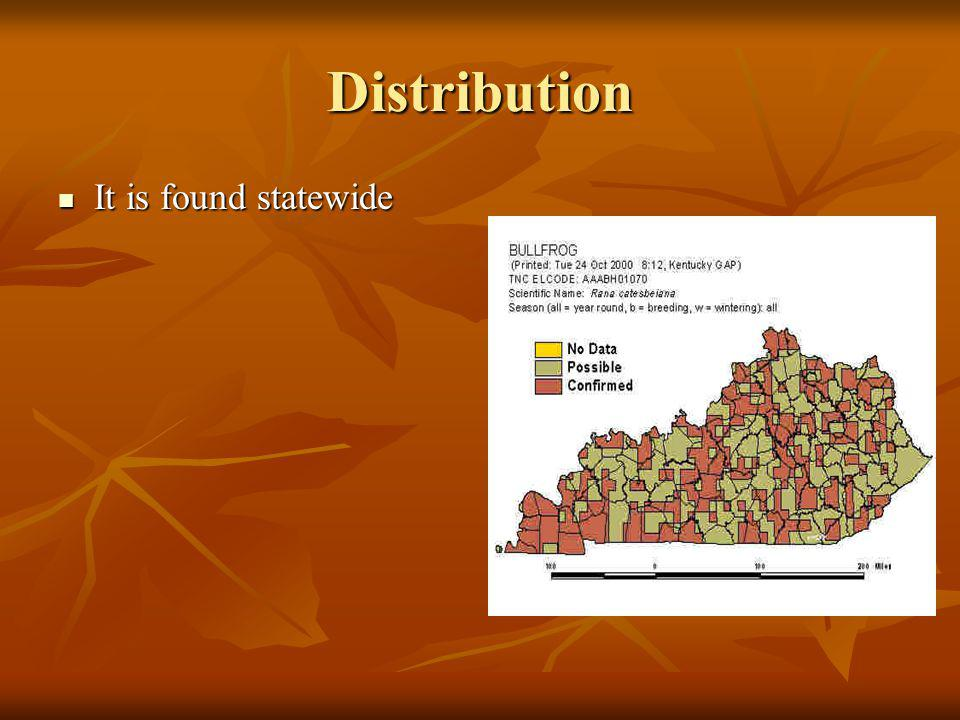 Distribution It is found statewide It is found statewide