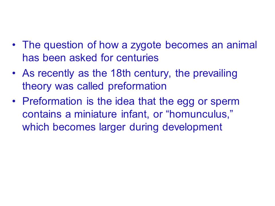 The question of how a zygote becomes an animal has been asked for centuries As recently as the 18th century, the prevailing theory was called preforma