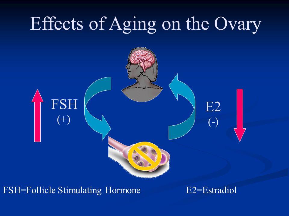 FSH (+) FSH=Follicle Stimulating Hormone Effects of Aging on the Ovary E2 (-) E2=Estradiol