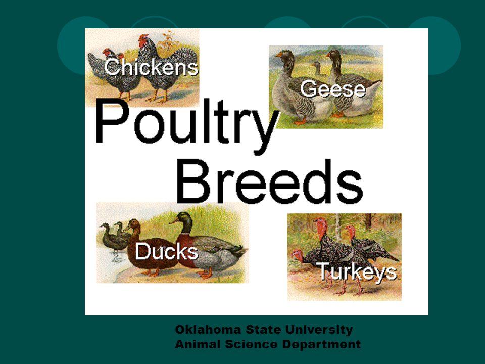 References… Oklahoma State University ANSC Dept.