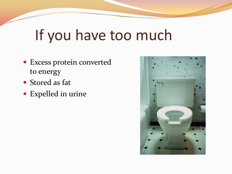 If you have too much Excess protein converted to energy Stored as fat Expelled in urine