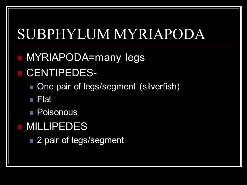 SUBPHYLUM MYRIAPODA MYRIAPODA=many legs CENTIPEDES- One pair of legs/segment (silverfish) Flat Poisonous MILLIPEDES 2 pair of legs/segment