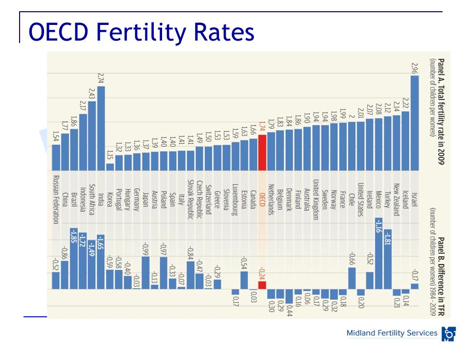 OECD Fertility Rates