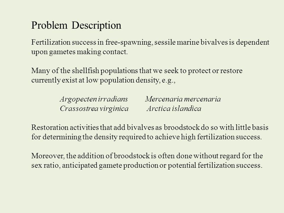 Problem Description Fertilization success in free-spawning, sessile marine bivalves is dependent upon gametes making contact.