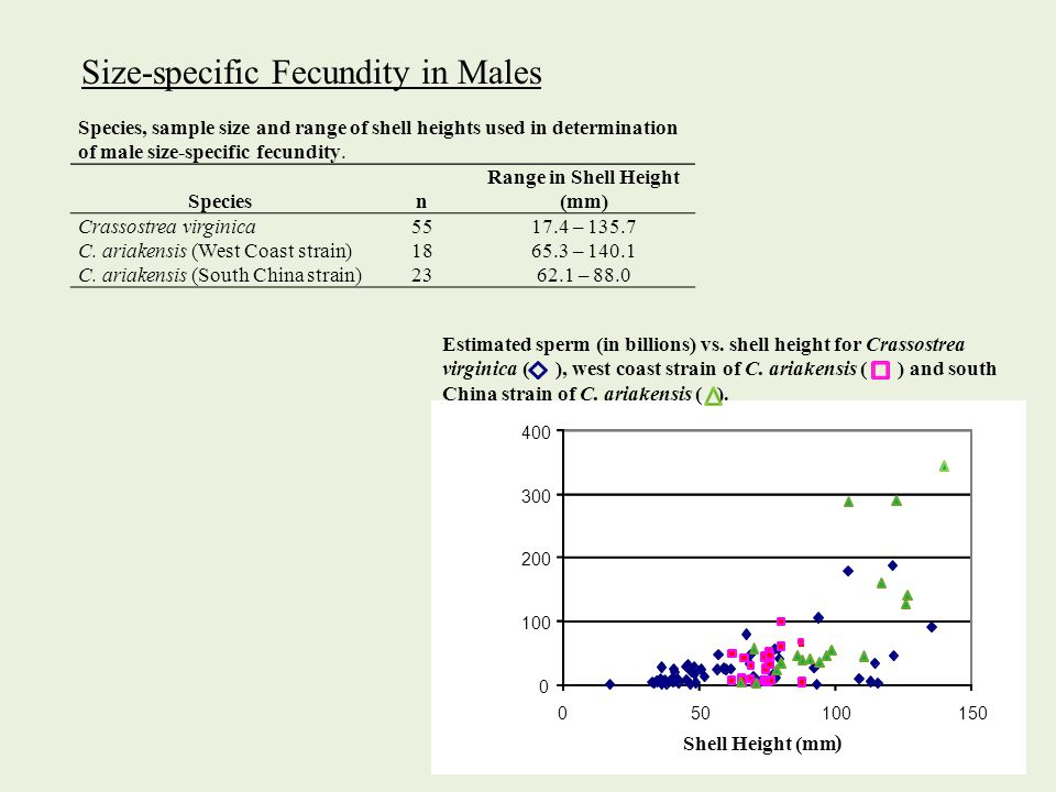 Species, sample size and range of shell heights used in determination of male size-specific fecundity.
