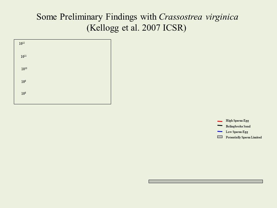 High Sperm:Egg Bolingbroke Sand Low Sperm:Egg Potentially Sperm Limited Some Preliminary Findings with Crassostrea virginica (Kellogg et al. 2007 ICSR