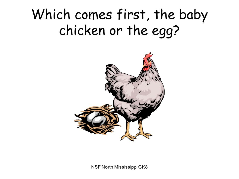 NSF North Mississippi GK8 Which comes first, the baby chicken or the egg?