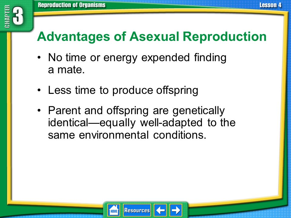 Asexual Reproduction The production of offspring by one parent without a sperm and an egg joining Results in offspring that are genetically identical to the parent organism 3.4 Asexual Reproduction