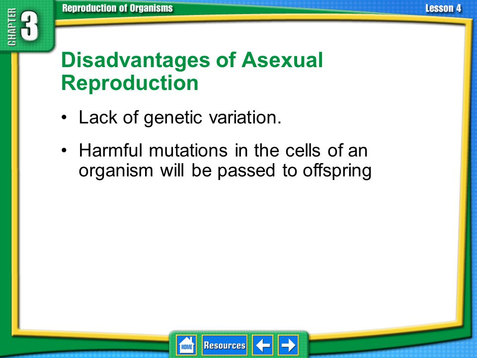 Advantages of Asexual Reproduction No time or energy expended finding a mate.
