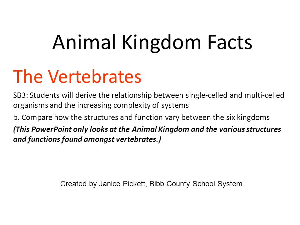 Animal Kingdom Facts The Vertebrates SB3: Students will derive the relationship between single-celled and multi-celled organisms and the increasing complexity of systems b.