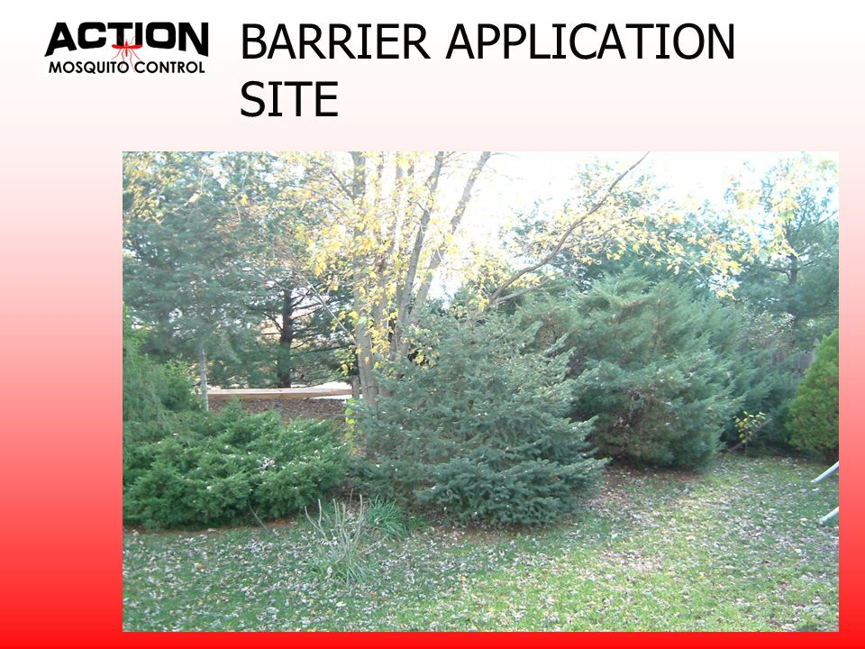 BARRIER APPLICATION For an effective barrier treatment you would treat any surface area that a mosquito would rest on - near the structure Use Demand CS at 6 ml per 1000 sq.