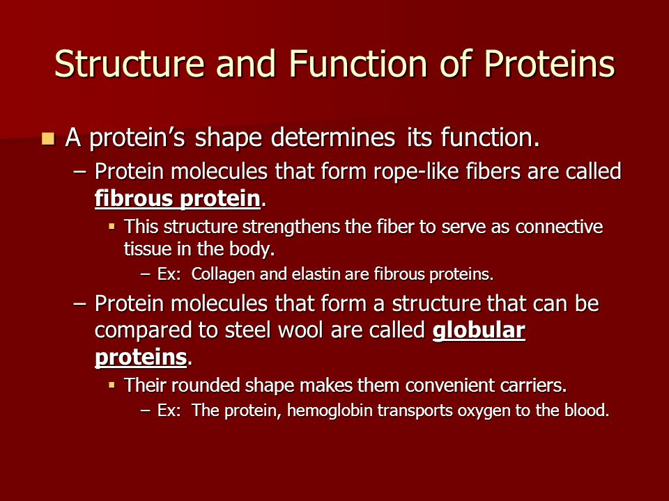 Fibrous Protein: Connective tissue, tendons, bone matrix, muscle fiber NOT SOLUBLE IN WATER Globular Protein: Hemoglobin, enzymatic catalysis, hormones (messengers), transporters through membranes SOLUBLE IN WATER