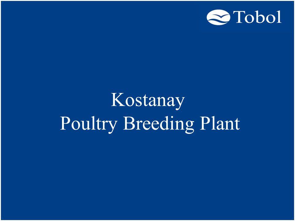 Kostanay Poultry Breeding Plant
