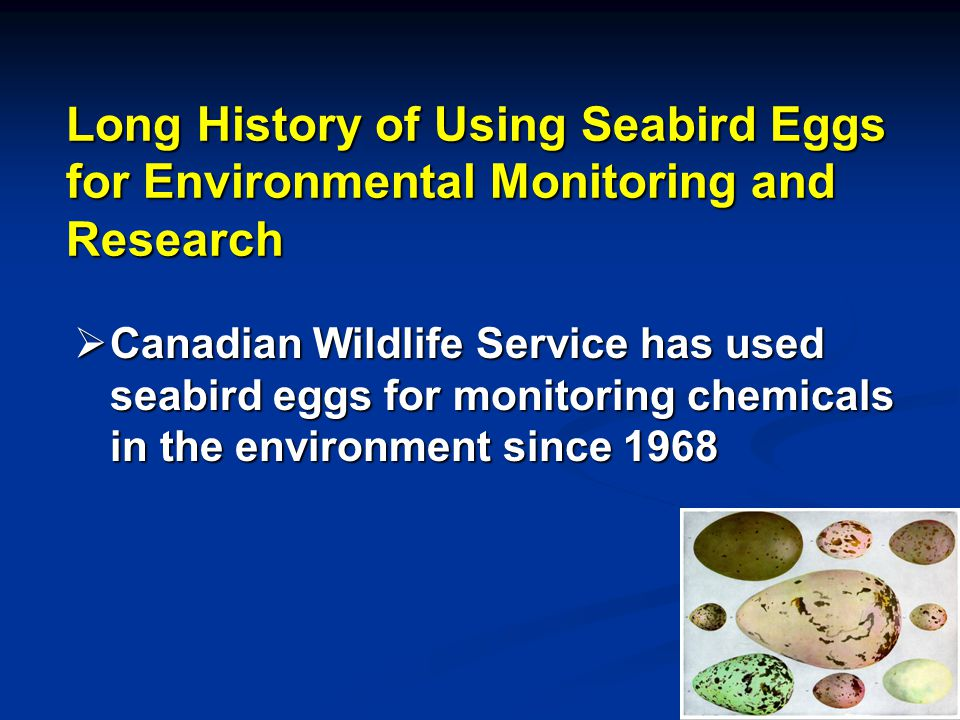 Long History of Using Seabird Eggs for Environmental Monitoring and Research Canadian Wildlife Service has used seabird eggs for monitoring chemicals in the environment since 1968 Canadian Wildlife Service has used seabird eggs for monitoring chemicals in the environment since 1968