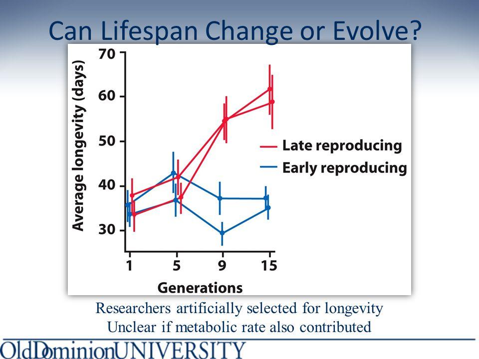 Can Lifespan Change or Evolve.