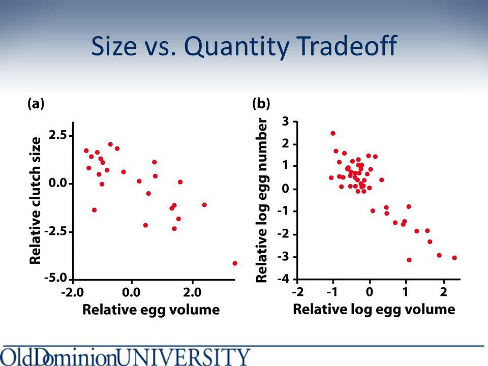 Size vs. Quantity Tradeoff
