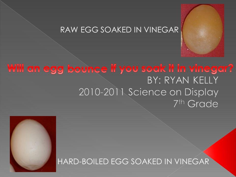 RAW EGG SOAKED IN VINEGAR HARD-BOILED EGG SOAKED IN VINEGAR