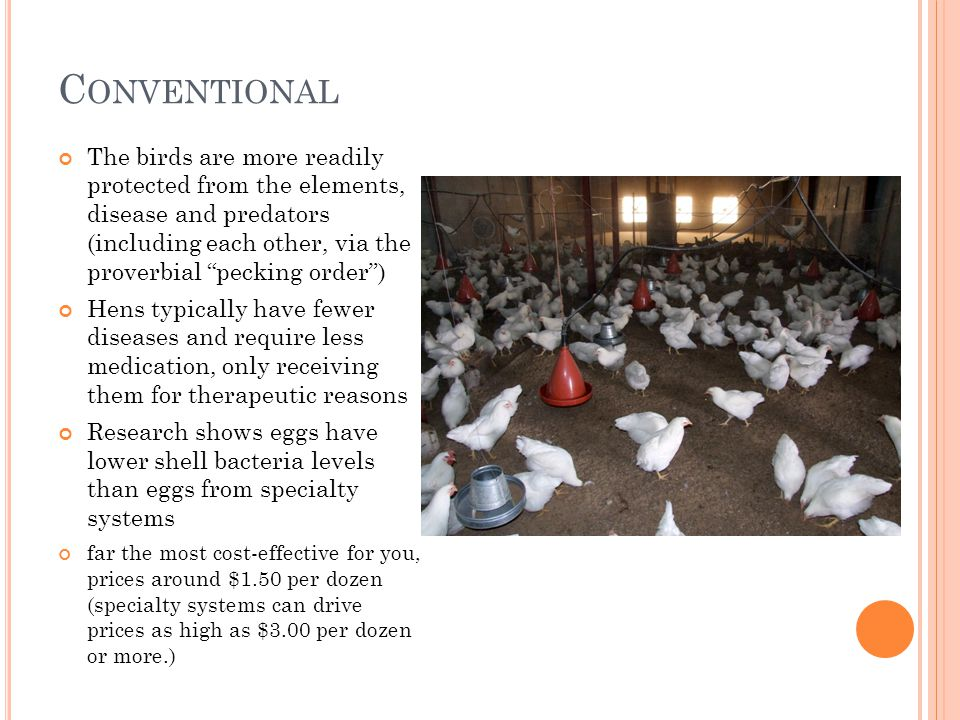 C ONVENTIONAL The birds are more readily protected from the elements, disease and predators (including each other, via the proverbial pecking order) Hens typically have fewer diseases and require less medication, only receiving them for therapeutic reasons Research shows eggs have lower shell bacteria levels than eggs from specialty systems far the most cost-effective for you, prices around $1.50 per dozen (specialty systems can drive prices as high as $3.00 per dozen or more.)