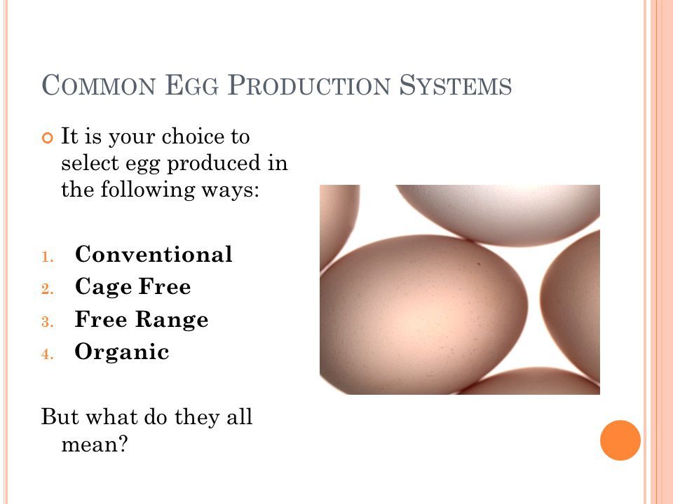 C OMMON E GG P RODUCTION S YSTEMS It is your choice to select egg produced in the following ways: 1.