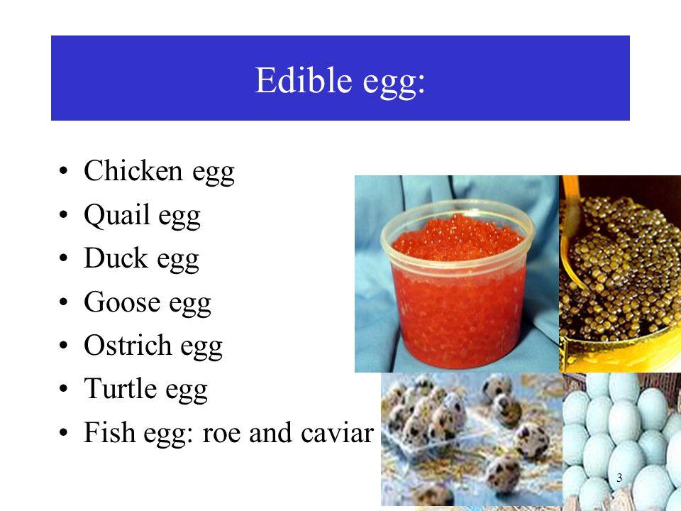 VITAMINS Component Amount per 100 g egg Vitamin A190 µg Vitamin D1,8 µg Vitamin E1,1 mg Vitamin Cnone Thiamin (B1)0,09 mg Riboflavin (B2)0,47 mg Niacin0.1 mg Vitamin B60.12 mg Folate50 µg Vitamin B12 2,5 µg Biotin20 µg Panthotenic acid 1.77 µg 24