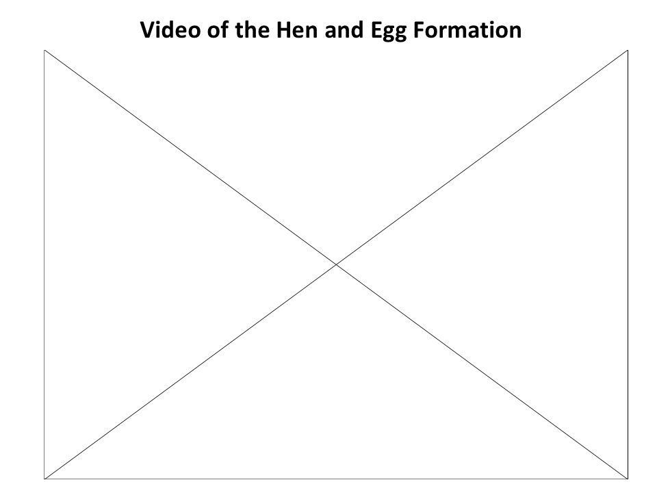 On the horizon is an in-line commercial egg production facility.