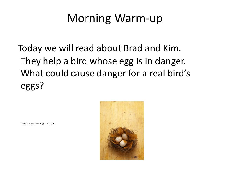 Morning Warm-up Today we will read about Brad and Kim. They help a bird whose egg is in danger. What could cause danger for a real birds eggs? Unit 1