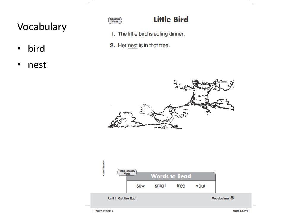 Vocabulary bird nest