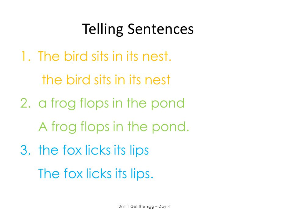 1. The bird sits in its nest. the bird sits in its nest 2. a frog flops in the pond A frog flops in the pond. 3. the fox licks its lips The fox licks