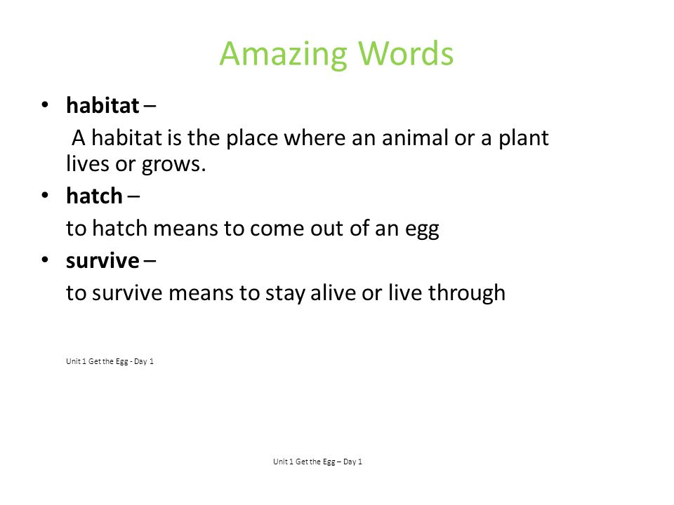 Amazing Words habitat – A habitat is the place where an animal or a plant lives or grows. hatch – to hatch means to come out of an egg survive – to su