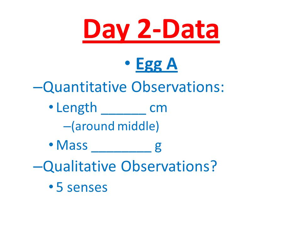 Day 2-Data Egg A – Quantitative Observations: Length ______ cm – (around middle) Mass ________ g – Qualitative Observations? 5 senses