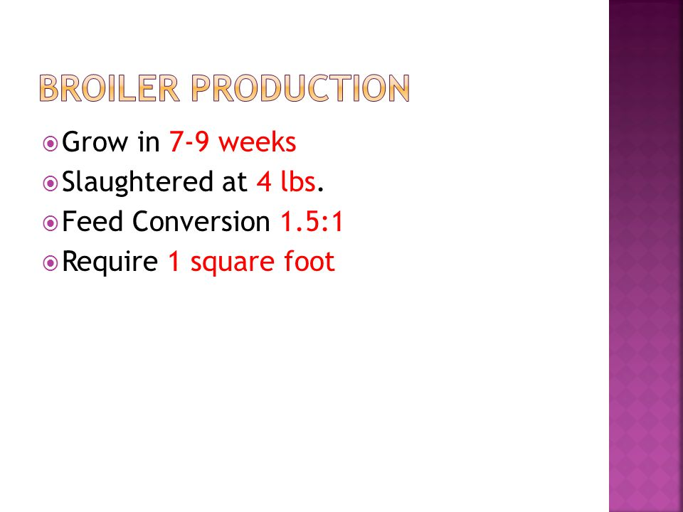 Grow in 7-9 weeks Slaughtered at 4 lbs. Feed Conversion 1.5:1 Require 1 square foot