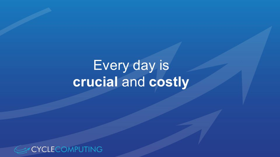 Every day is crucial and costly