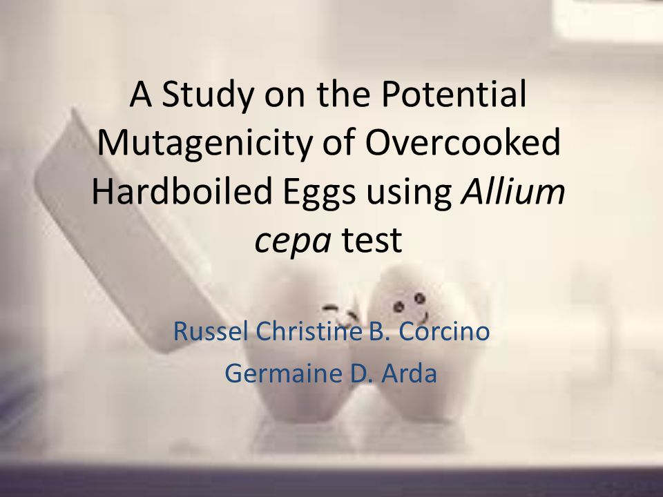 A Study on the Potential Mutagenicity of Overcooked Hardboiled Eggs using Allium cepa test Russel Christine B.