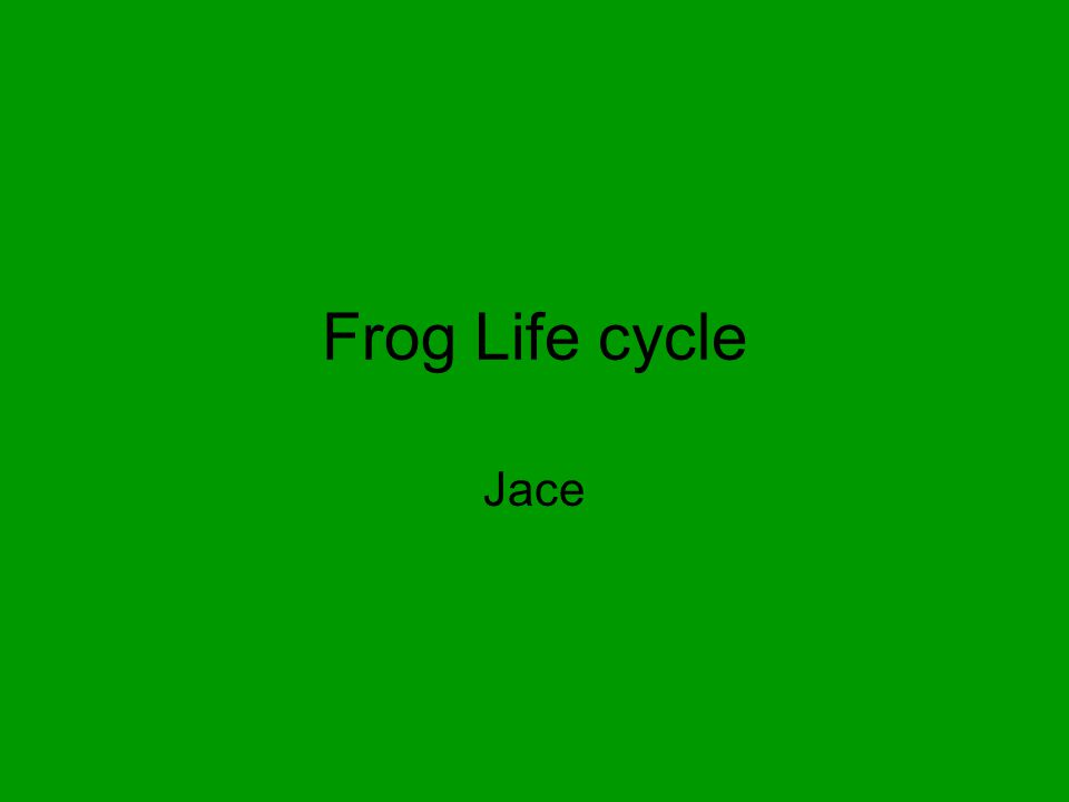 Frog Adult Interesting Facts: The tadpoles become more and more froglike, until it becomes an adult frog. After eleven weeks, the frog comes from egg