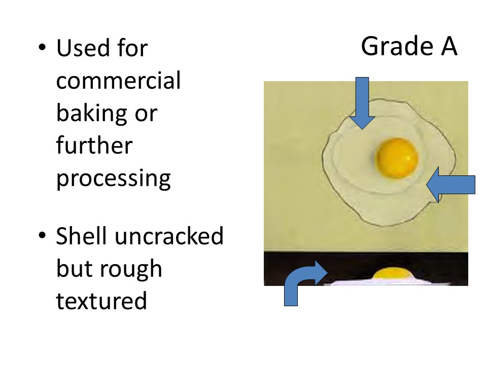 Grade A Used for commercial baking or further processing Shell uncracked but rough textured